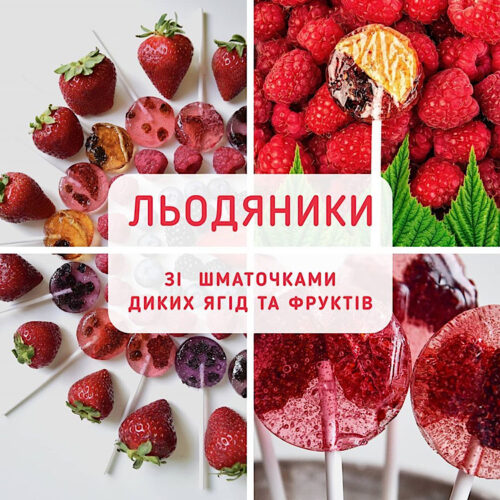 Натуральные леденцы на палочке с ягодами Gogodza